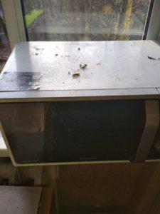 Уборка квартиры после выведения тараканов
