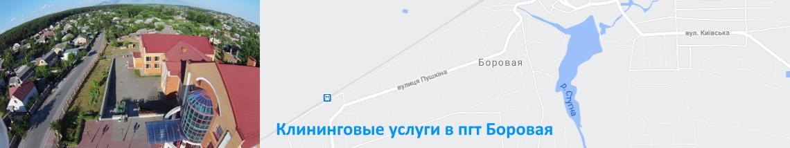 Уборка дома Боровая, Мотовиловка